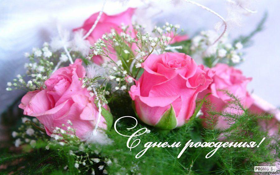 Поздравляем Пилюс Наталию Николаевну с Днем рождения!