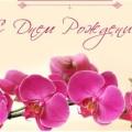Поздравляем с Днем рождения главу администрации муниципального образования Дубенский район Гузова Кирилла Олеговича