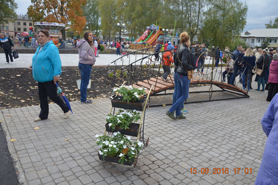 Реализация Социально-значимого проекта в Кимовске