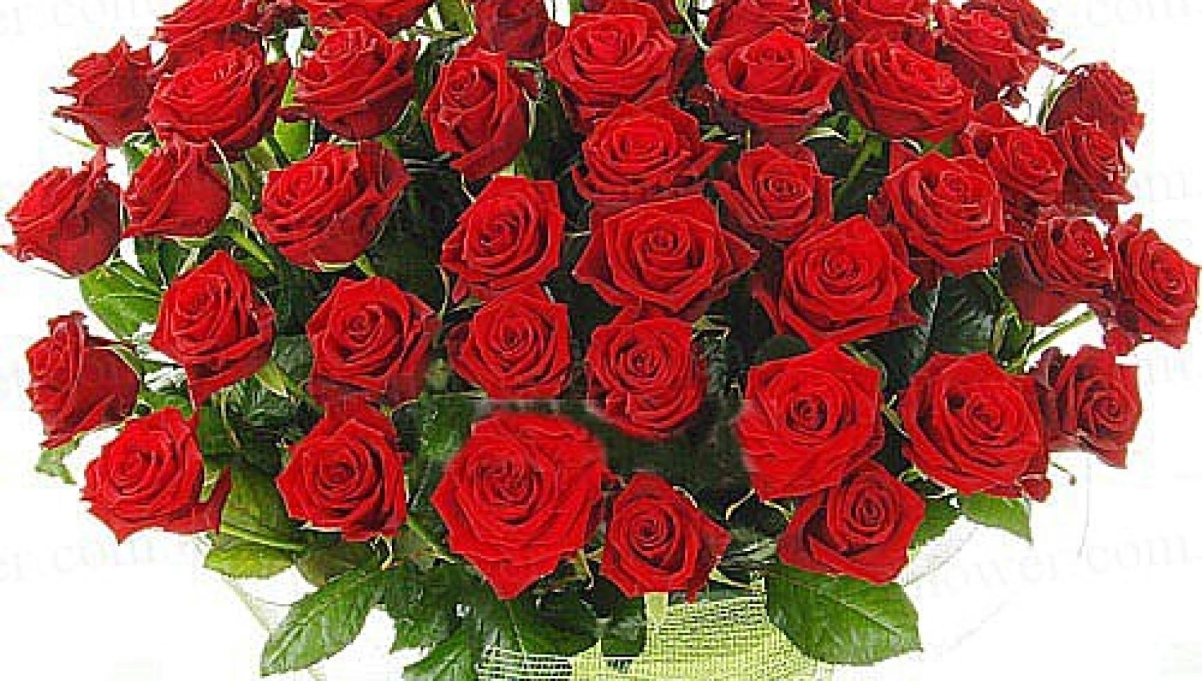Поздравляем с Днем рождения главу муниципального образования Одоевский район Косарева Вячеслава Алексеевича