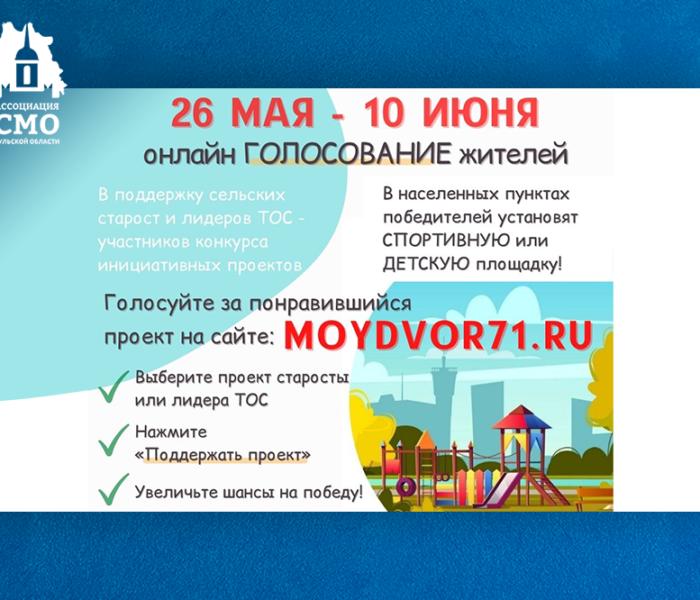 Жители Тульской области могут проголосовать за обустройство спортивной или детской площадки в своем населенном пункте