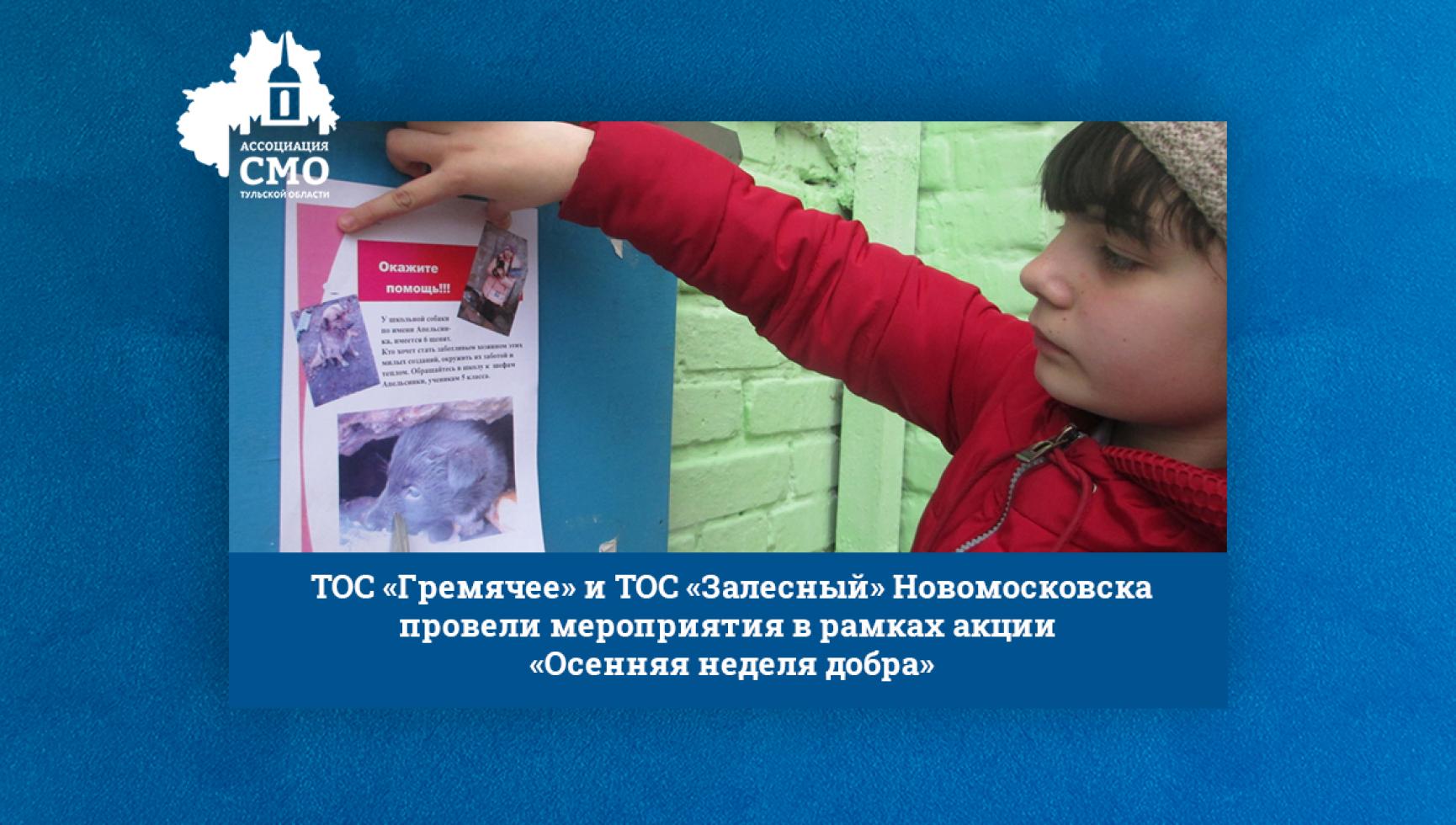 ТОС «Гремячее» и ТОС «Залесный» Новомосковска провели мероприятия в рамках акции «Осенняя неделя добра»
